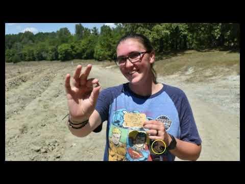 Woman Finds 3.72 Carat Yellow Diamond at Arkansas Park
