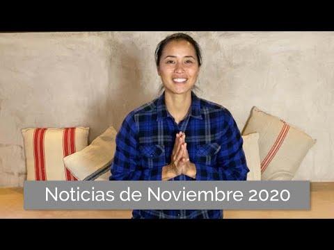 Noticias del mes de Noviembre 2020 | El Altruismo