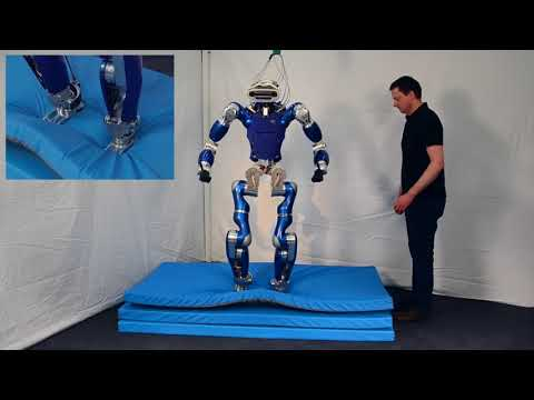 Passivity-based whole-body balancing for torque-controlled humanoid robots