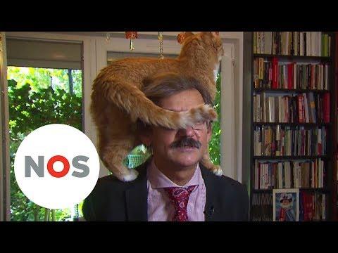 BLOOPER: Kat springt op schouders baasje tijdens tv-interview Nieuwsuur
