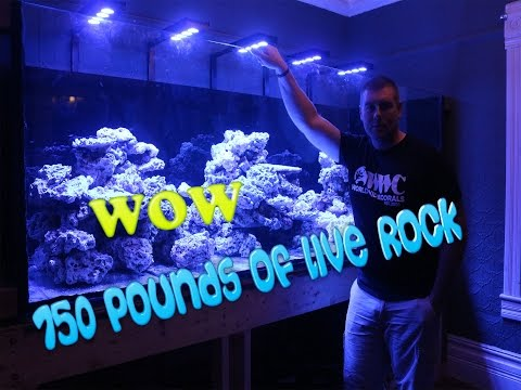 Aquascape change  with 750 pounds of Marco Rock tank tour.