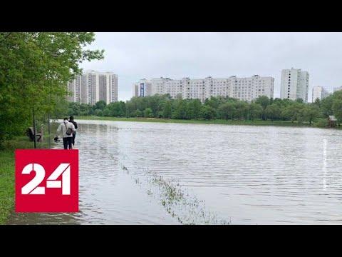 После сильного дождя в столичном Алтуфьеве разлился пруд