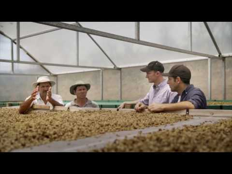 Campos Coffee: Greater visibility, faster global operations