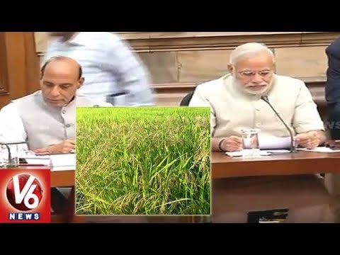 Good News For Farmers | Central Govt Hikes Minimum Support Price For 14  Kharif Crops