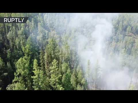 Hot Month | Wildfires spread in Siberia after record heat in June