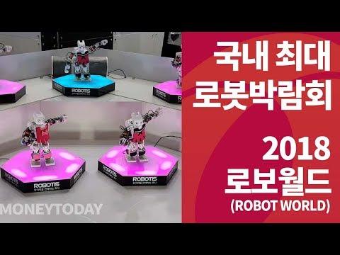 신나게 춤추는 로봇들, 2018 로보월드 (ROBOT WORLD)