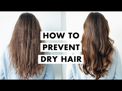 How to Fix Dry Hair | Winter Hair Tips