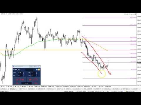 Critical Fibonacci Levels in Forex Market
