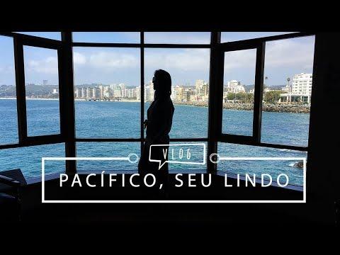 Vlog: Vinícola, Valparaiso, Viña del Mar e Seguidores | Pigmento F