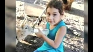 Caso Sharon Figueroa: Principal sospechoso a prisión preventiva