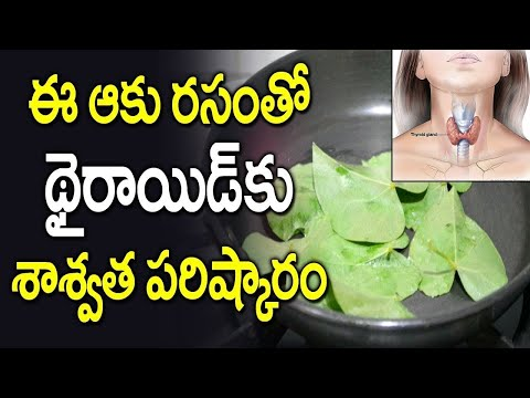 Cure Thyroid with Tippa Theega Juice    Thyroid Problem Solution    SumanTv HealthCare