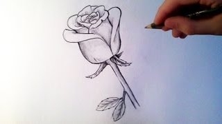 Comment Dessiner Une Rose Tutoriel Youtube