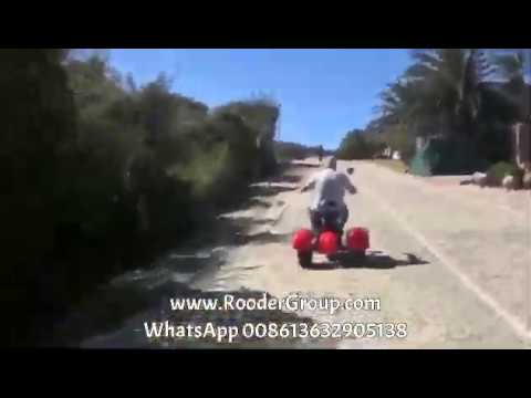 Three wheel electric scooter with eec coc Feedback from South Africa