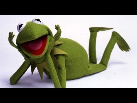 صوت الضفدع  The sound of a frog