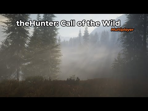theHunter: Call of the Wild -- 29/07/2020