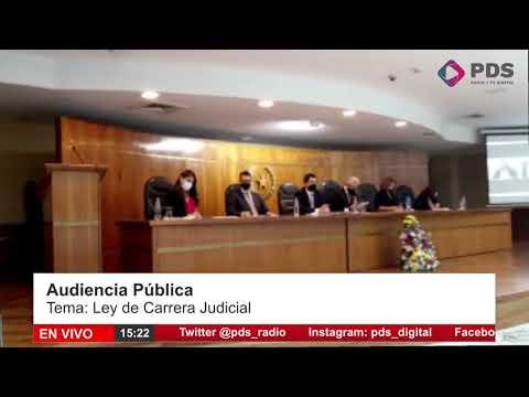 Audiencia Pública-  Ley de Carrera Judicial- Juez Amilcar Marecos