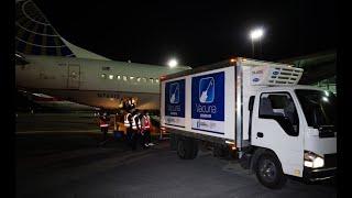 Vacunas contra el Covid-19 llegaron a Guatemala