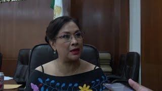 Mendoza Díaz calificó como un atentado a la democracia quitarle recursos al INE.