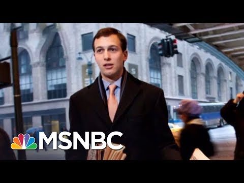 Jared Kushner's Paper Linked To WikiLeaks | The Beat With Ari Melber | MSNBC
