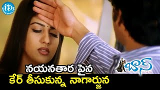 Nagarjuna Takes Care of Nayanthara | Boss Telugu Movie Scenes | Nagarjuna | Shriya - IDREAMMOVIES