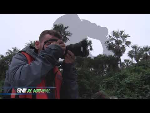 #SNTAlNatural: Turismo de Naturaleza