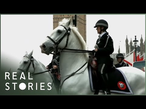 The Spider's Web: Britain's Second Empire (British Conspiracy Documentary) - Real Stories