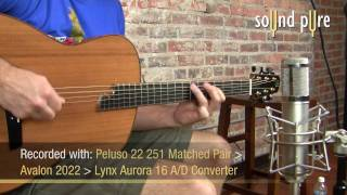Tom Bills G2 Acoustic Guitar Demo at Sound Pure