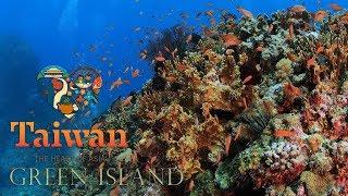 綠島潛水新聞影片