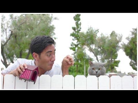 connectYoutube - Top Zach King Magic Tricks 2017 - Best Halloween Magic Tricks Ever