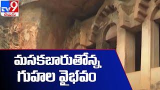 గుర్తింపునకు నోచుకోని గుంటుపల్లి గుహలు : Guntupalli Caves - TV9 - TV9