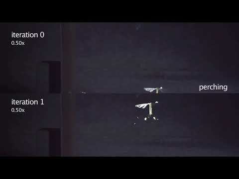Perching with a Robotic Insect using Adaptive Tracking Control and Iterative Learning Control IJR