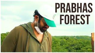 Prabhas Adopts Forest Land TEASER | Prabhas Latest News | TFPC - TFPC