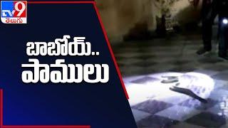 East Godavari : ఓ ఇంట్లోకి చొరబడిన పాము - TV9 - TV9