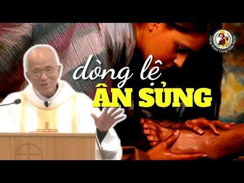 Dòng lệ ân sủng 😢 Khóc nhiều được tha nhiều 🎁 Bài giảng của Cha Phạm Quang Hồng