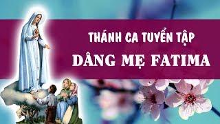 Thánh Ca Dâng Đức Mẹ Fatima - Tuyệt Phẩm Tháng Mân Côi Kính Đức Mẹ - Thánh Ca Tuyển Chọn -