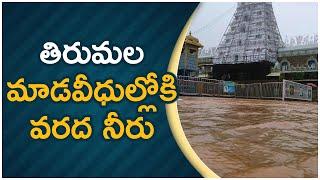 తిరుమల మాడవీధుల్లో కి వరద నీరు | Flood Water in The Streets of Thirumala | Tollywood - TFPC