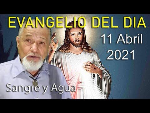 Evangelio Del Dia de Hoy - Domingo de La Divina Misericordia 11 Abril 2021- Sangre y Agua