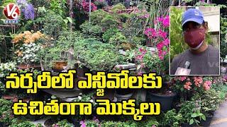 LB Nagar Nursery Owner Distributes Plants For NGO's | Hyderabad | V6 News - V6NEWSTELUGU