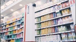 Conoce a Zippedi, el robot chileno que pasó de hacer inventarios a sanitizar supermercados