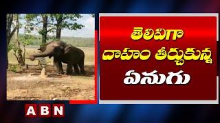 తెలివిగా దాహం తీర్చుకున్న ఏనుగు | Intelligent Elephant Pump Boring || ABN Telugu - ABNTELUGUTV