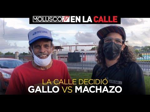 """LOS CASERIOS OPINAN DE LA GUERRA DE """"GALLO THE PRODUCER"""" vs EL HERMANO DE GILLITO """"JAVIER DE JESÚS"""""""