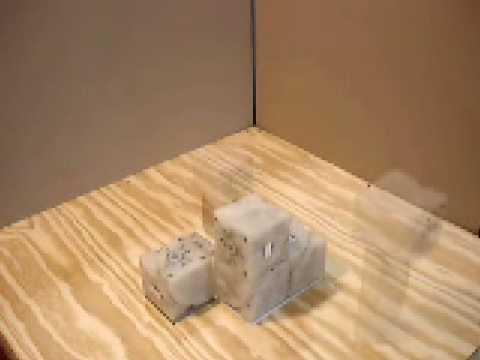 Self-replicating blocks from Cornell University