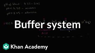 Buffer system