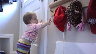 Coat hooks and shelf