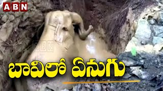 Elephant in Well | Kerala Forest Department Rescue With Proclainer | Viral Videos | ABN Telugu - ABNTELUGUTV
