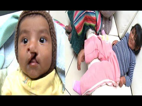 En busca de ayuda médica para estos pequeños