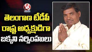 Bakkani Narasimhulu Appointed As Telangana TDP President   V6 News - V6NEWSTELUGU