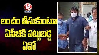 ACB Caught Miryalaguda Agriculture Officer Srinivas While Taking Bribe | V6 News - V6NEWSTELUGU