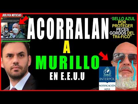 ¡HUN-D3N A MURILLO EN USA! ACTIVA-R4N SELLO AZUL DE INT3R-POL PARA SU EXTR4-DICI-ON