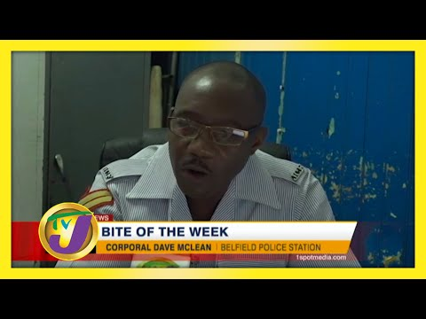 TVJ Bite of the Week - November 27 2020
